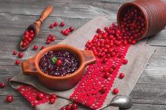 Molho caseiro do Lingonberry Fotografia de Stock