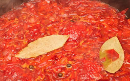 Molho de tomate Fotos de Stock Royalty Free