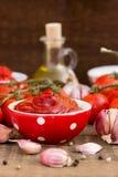 Molho de tomate caseiro imagem de stock royalty free