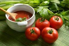 Molho de tomate com aipo na tabela de madeira verde Fotografia de Stock Royalty Free