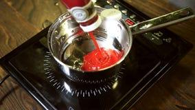 Molho de tomate na bacia foto de stock