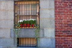 Molho exterior atrativo da janela fotos de stock royalty free