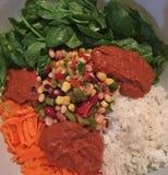 Molho picante misturado dos feijões do arroz dos espinafres das cenouras pronto para envoltórios imagem de stock