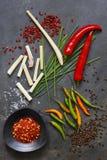 Molió las pimientas de chile secadas con pimientas, hierba de limón y cebolletas frescas Imagen de archivo