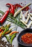 Molió las pimientas de chile secadas con pimientas, hierba de limón y cebolletas frescas Fotografía de archivo