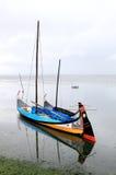 Moliceiros de Barcos, bateaux traditionnels du Portugal Photographie stock libre de droits