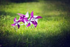 Molinillo de viento púrpura en una hierba verde Imagen de archivo libre de regalías