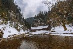 Molino de agua de madera viejo en invierno con caer de la nieve Imágenes de archivo libres de regalías