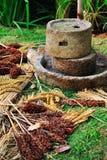 Molino de piedra Imagen de archivo libre de regalías