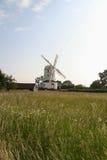 Molino de Saxtead con el campo salvaje Imagen de archivo libre de regalías