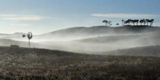 Molino de viento australiano en niebla Imágenes de archivo libres de regalías