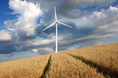 Molino de viento con el campo de la cebada Imagen de archivo libre de regalías
