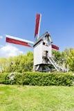 Molino de viento de Terdeghem Imágenes de archivo libres de regalías