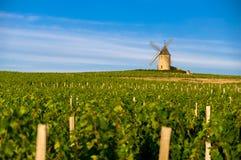Molino de viento del pueblo de Moulin-à- respiradero, Beaujolais, Francia Imagen de archivo libre de regalías