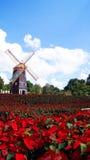 Molino de viento del rojo del jardín Foto de archivo libre de regalías