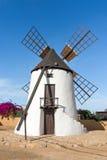 Molino de viento en Antigua en Fuerteventura Imagen de archivo libre de regalías