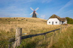 Molino de viento en el pasto Foto de archivo libre de regalías