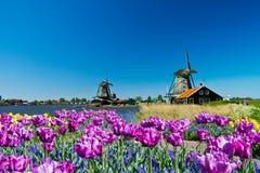 Molino de viento en Holanda imágenes de archivo libres de regalías