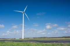 Molino de viento en los campos con las flores Fotos de archivo libres de regalías