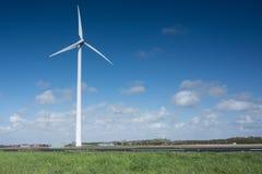 Molino de viento en los campos con las flores Imagen de archivo libre de regalías