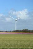 Molino de viento en los campos con las flores Imagen de archivo