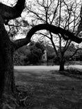 Molino de viento en Moinhos de Vento Park fotos de archivo libres de regalías