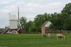 Molino de viento en Williamsburg foto de archivo libre de regalías