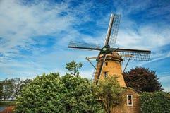Molino de viento de madera, arbustos frondosos y cielo azul soleado en Weesp fotos de archivo libres de regalías