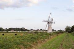 Molino de viento Norfolk Broads Imágenes de archivo libres de regalías