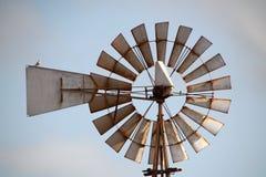 Molino de viento viejo con el pequeño pájaro Imagenes de archivo