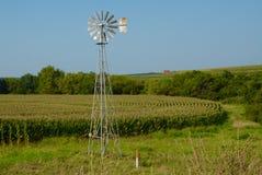 Molino de viento y campo de maíz foto de archivo libre de regalías