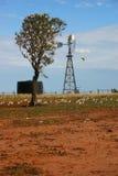 Molino de viento y loros Foto de archivo libre de regalías