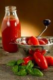 Molino del alimento con los tomates Imagen de archivo
