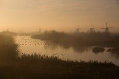 Molinoes de viento de Kinderdijk en niebla de la mañana Foto de archivo libre de regalías
