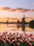 Molinoes de viento en Holanda con el canal Foto de archivo libre de regalías