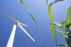 Molinoes de viento en la salida del sol Fotografía de archivo libre de regalías