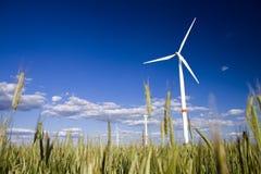 Molinoes de viento en un campo del centeno Imagen de archivo