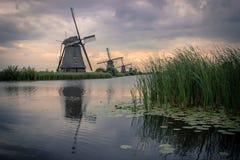 Molinoes de viento holandeses Kinderdijk Fotos de archivo libres de regalías