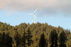 Molinos de la energía eólica sobre bosque Fotografía de archivo