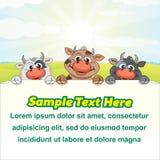 Molkerei-Illustrations-lustige Kühe mit leerem Zeichen vektor abbildung