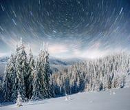 Molkerei Star Trek im Winterholz Drastische und malerische Szene In Erwartung des Feiertags Lizenzfreie Stockfotos