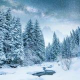 Molkerei Star Trek im Winterholz Drastische und malerische Szene In Erwartung des Feiertags Stockbilder