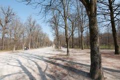 Molla in anticipo in parco Fotografia Stock Libera da Diritti