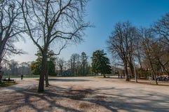 Molla in anticipo in parco Immagine Stock