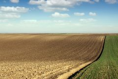 Molla arata di agricoltura del campo Immagine Stock Libera da Diritti