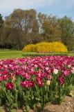 Molla benvenuta: bello parco con i fiori colorati Fotografia Stock