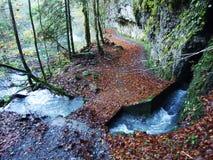 Molla Blaue Brunnen di morfologia carsica accanto al lago Klontalersee nella valle di Klontal immagini stock libere da diritti