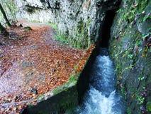 Molla Blaue Brunnen di morfologia carsica accanto al lago Klontalersee nella valle di Klontal fotografie stock