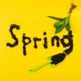 Molla del testo incorniciata dai rifornimenti del giardino e dalle piante verdi Fiore della vanga su un fondo giallo luminoso Blo immagine stock