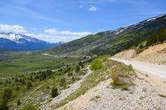 Molla di ciclismo di montagna fotografia stock libera da diritti